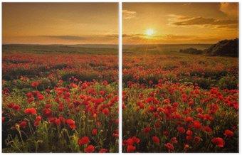 İki Parçalı Gün batımında Haşhaş alan