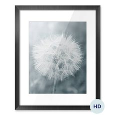 Poster - Dandelion