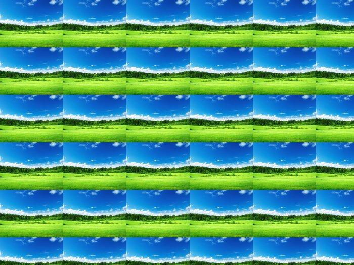 Vinylová Tapeta Pole trávy a dokonalé nebe - Roční období
