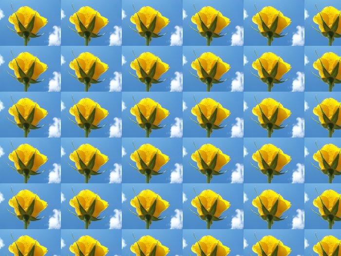 Vinylová Tapeta Close-up žluté růže - Štěstí