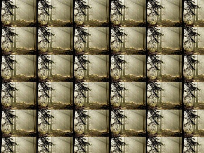 Vinylová Tapeta Jehličnaté lesy na konci podzimu - Roční období