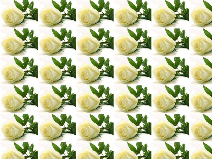 Vinylová Tapeta Bílé růže - Témata