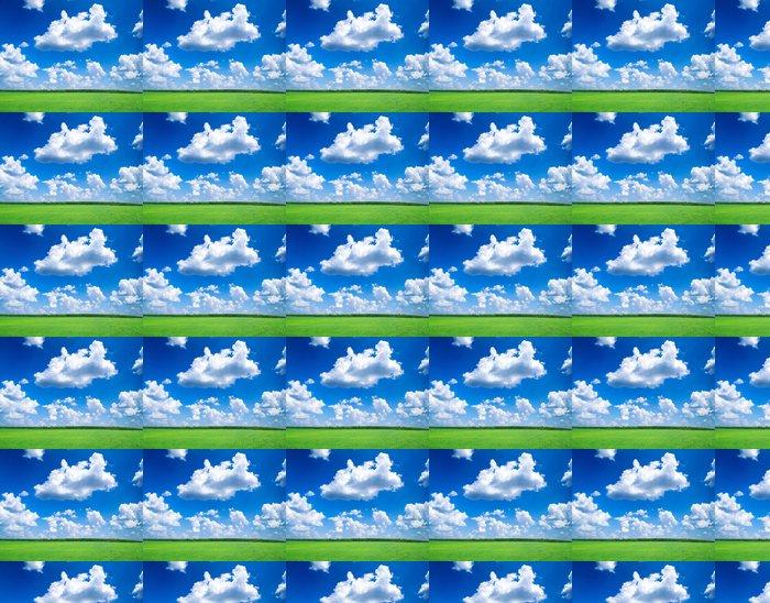 Vinylová Tapeta Pole - Nebe