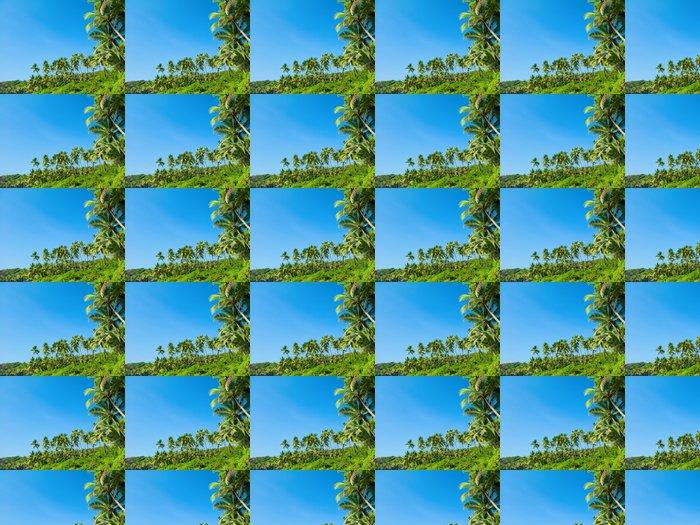Vinylová Tapeta Pláž s palmami - Palmy