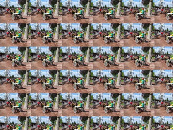 Vinylová Tapeta Dostihový kůň Enghien - Přírodní krásy