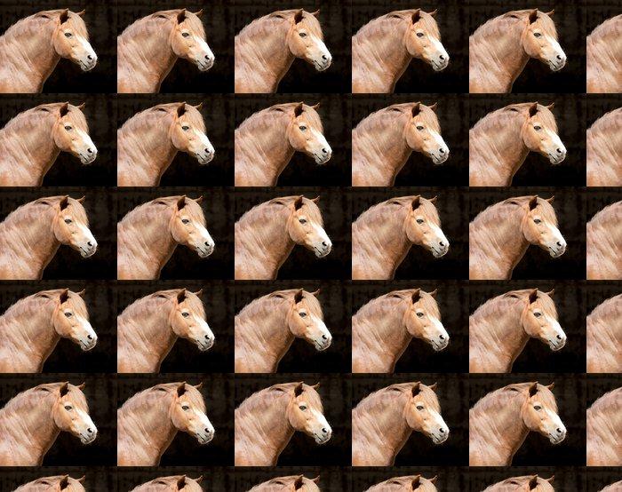 Vinylová Tapeta Portrét koně v zoo - Savci