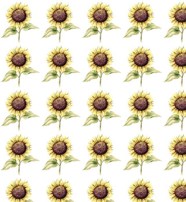 Vinylová Tapeta Obraz, pastel, slunečnice - Rostliny