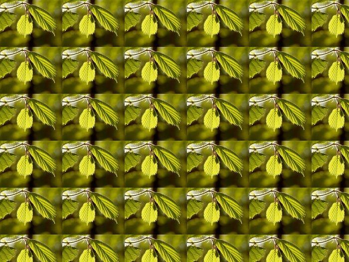 Vinylová Tapeta Jarní Maple Leaf - Rostliny