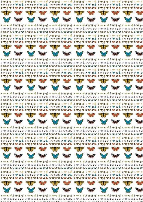 Vinylová Tapeta Schmetterlinge sammlung02 - Roční období