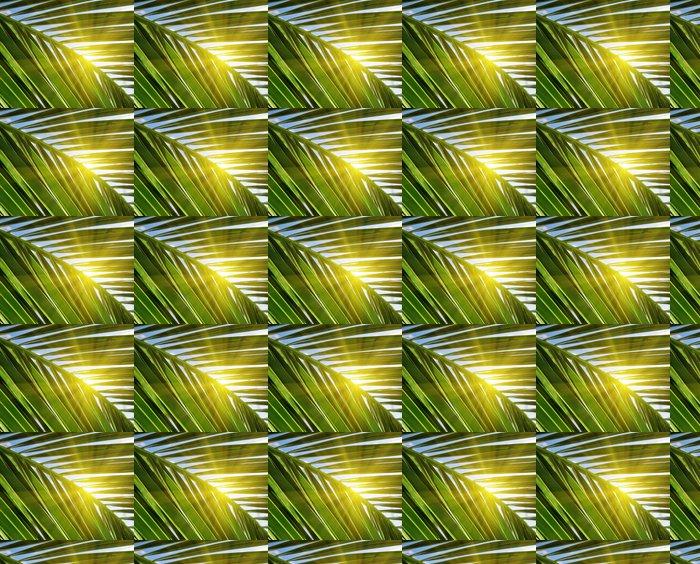 Vinylová Tapeta Zelený list palmy a slunečním zářením - Roční období