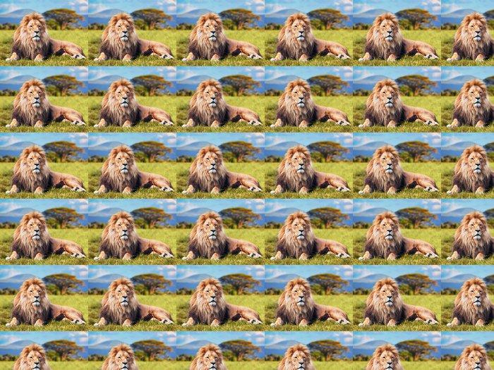 Vinylová Tapeta Velký lev ležící na trávě savany. Keňa, Afrika - Témata