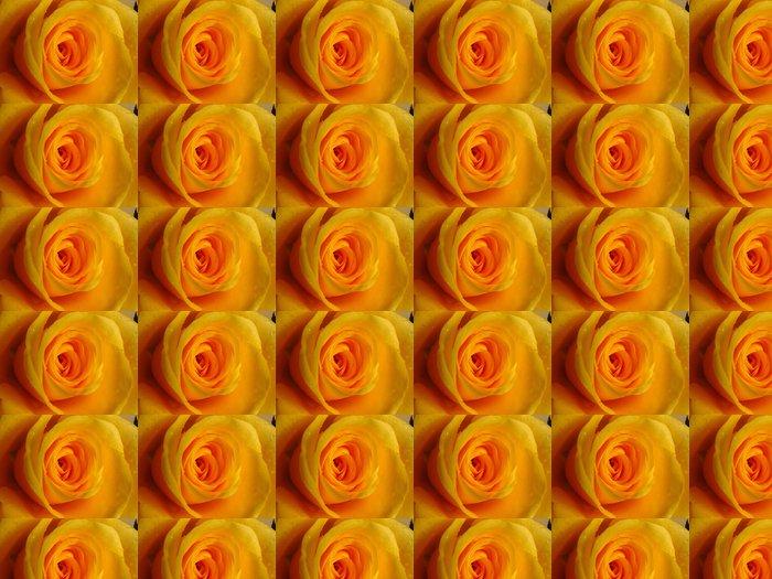 Vinylová Tapeta Růže makro - Štěstí