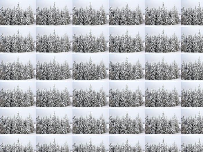 Vinylová Tapeta Jedle - Lesy