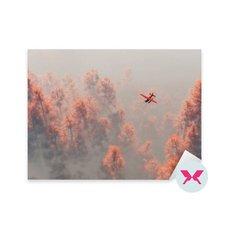 Çıkartması - Sisdeki sonbahar çamlarının üzerinden tek motorlu uçak