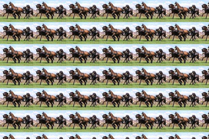 Vinylová Tapeta 4 kočárové koně - Savci