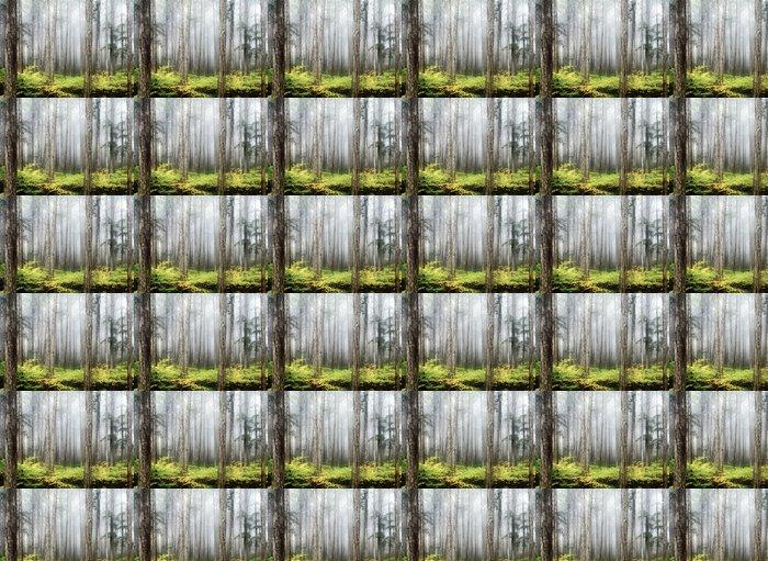 Vinylová Tapeta Cypress les krása - Roční období