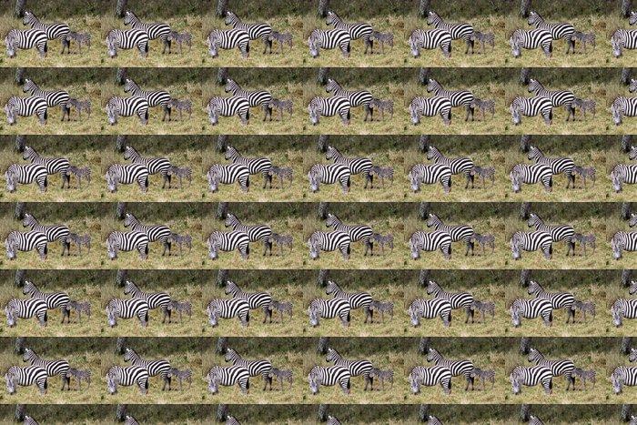 Vinylová Tapeta Grevy s zebra (Equus grevyi) - Témata