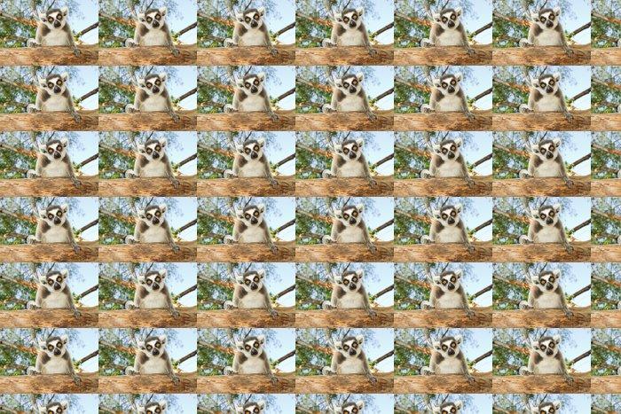 Vinylová Tapeta Ring-tailed lemur - Savci