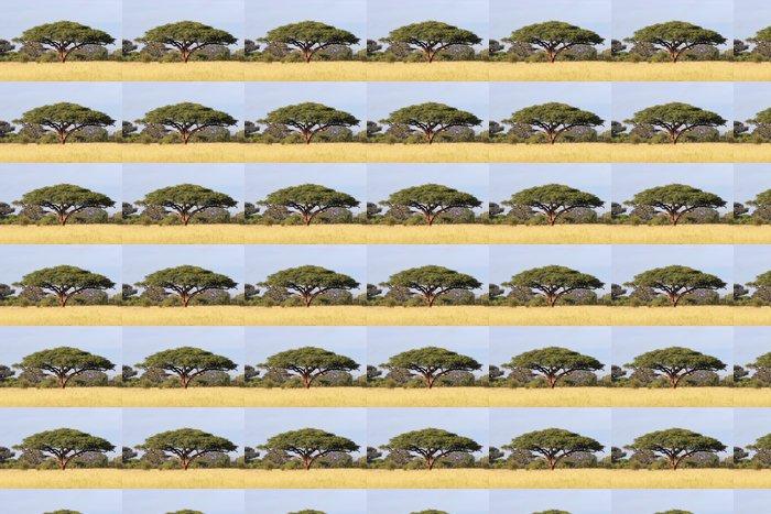 Vinylová Tapeta African Acacia tree, Hwange National Park - Témata