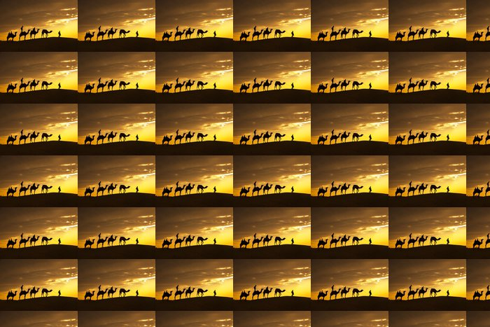 Vinylová Tapeta Pouštní místní procházky s velblouda přes pouště Thar - Asie
