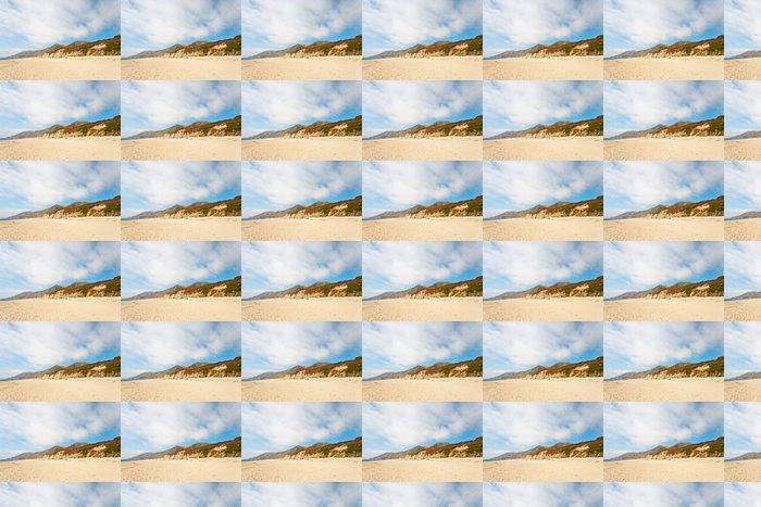Vinylová Tapeta Pobřeží Big Sur s kameny a vegetací. Kalifornie. USA. - Amerika
