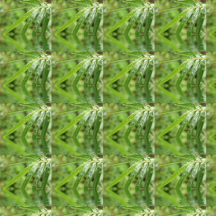 Vinylová Tapeta Listy bambusu - Rostliny