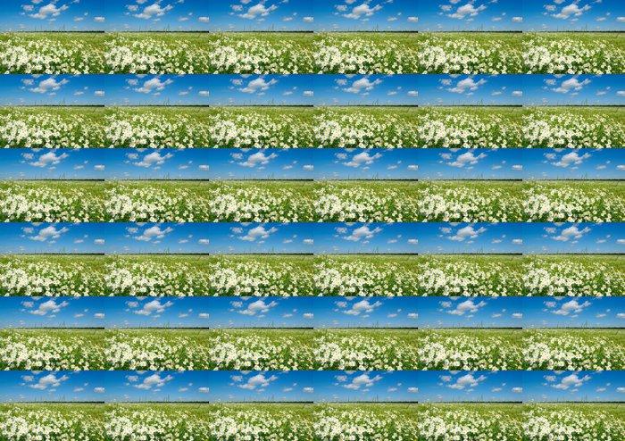 Vinylová Tapeta Bílé sedmikrásky - Květiny