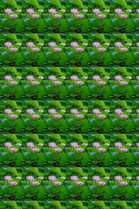 Vinylová Tapeta Rozkvetlé lotosový květ - Květiny
