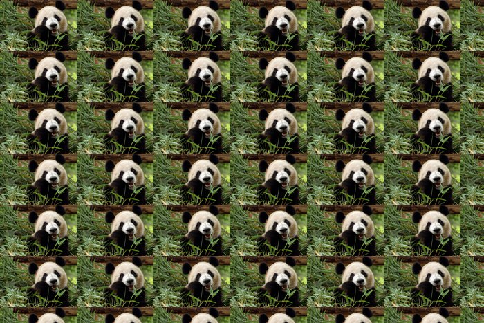 Vinylová Tapeta Panda frisst Bambus - Témata