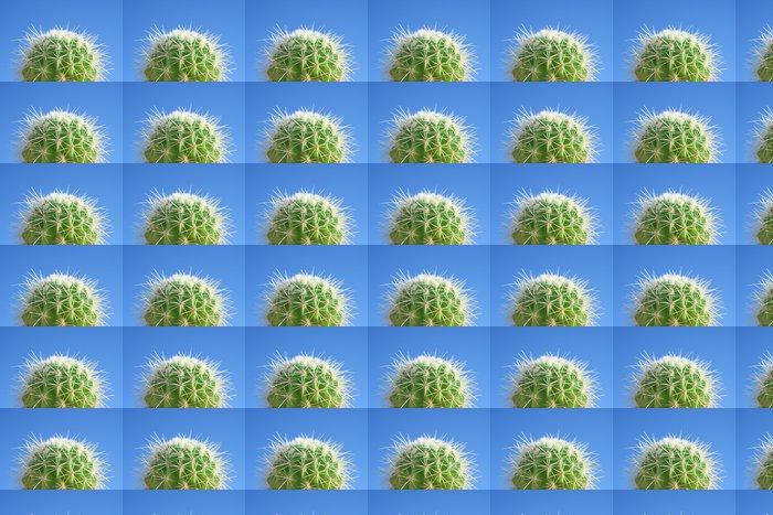 Vinylová Tapeta Letní kaktus - Rostliny