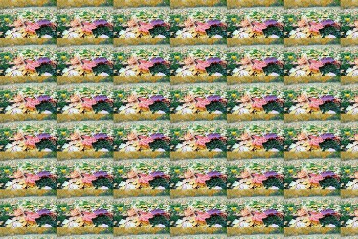 Vinylová Tapeta Listí na trávě v parku na podzim - Roční období