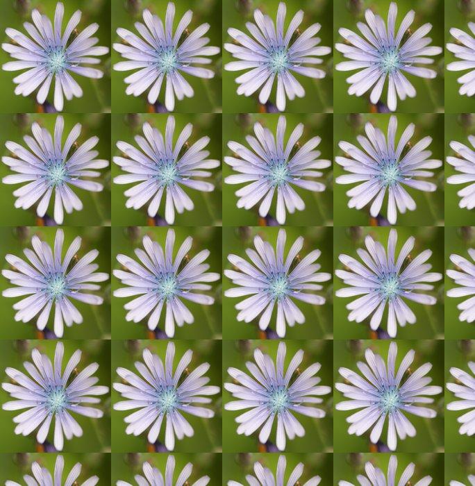 Vinylová Tapeta Laitue vivace - Květiny