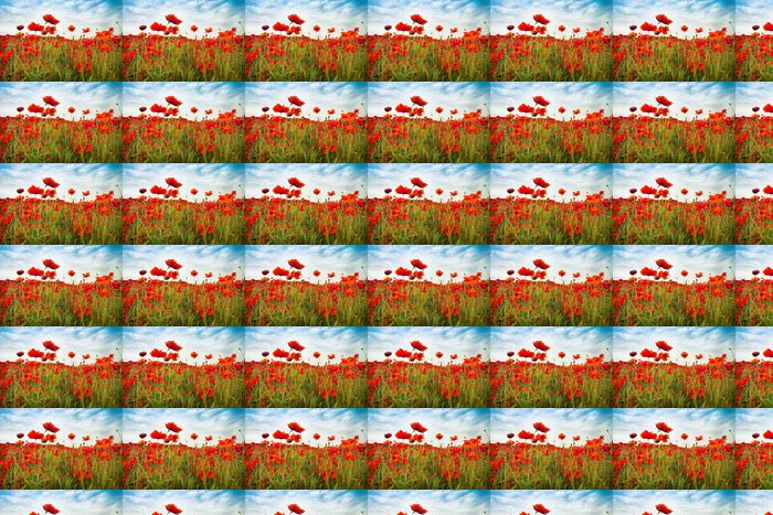 Vinylová Tapeta Wild Red Poppies venkov pole s neuvěřitelnou oblohou - Témata