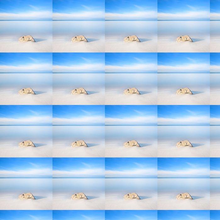 Vinylová Tapeta Rock na bílé písčité pláže a moře na obzoru. - Voda