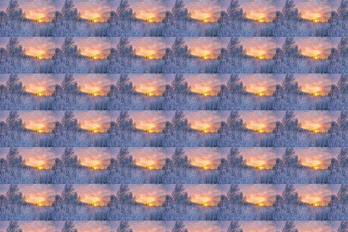 Vinylová Tapeta Zimní krajina se západem slunce - Roční období