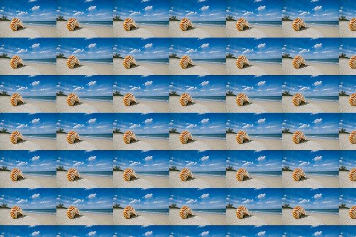 Vinylová Tapeta Nautilus shell na bílém Floridy písku pláže pod slunečními paprsky - Prázdniny