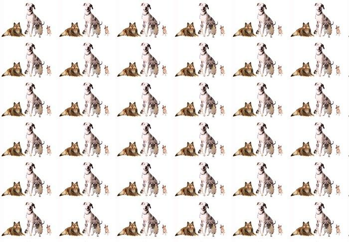 Vinylová Tapeta Různých plemen psů - Savci