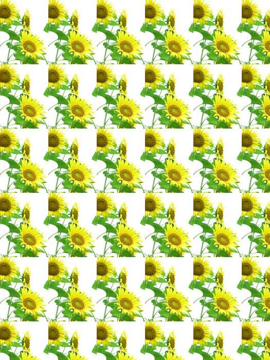 Vinylová Tapeta ひ ま わ り の 花 - Květiny