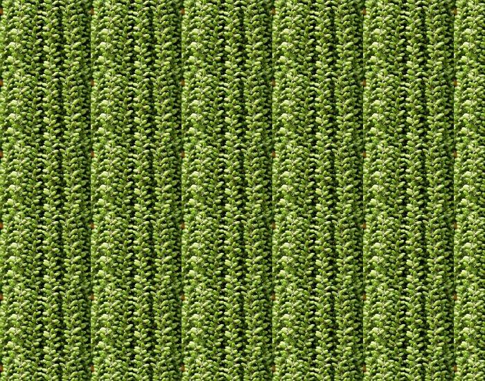 Vinylová Tapeta Tropické královna palm ovoce close-up - Zemědělství