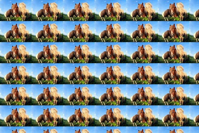 Vinylová Tapeta Cute funny pony přes rybí oko - Savci