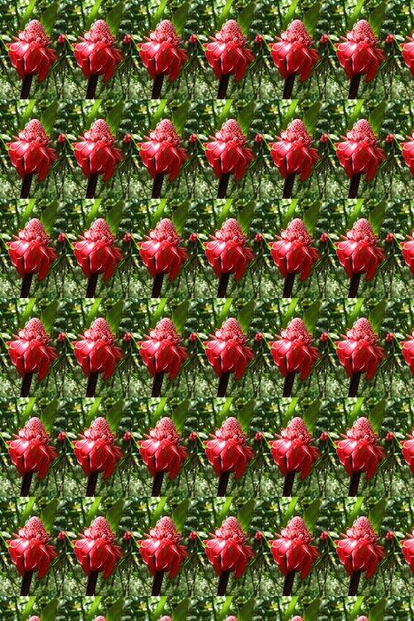 Vinylová Tapeta Fleur du Jardin de balata martinique - Zemědělství