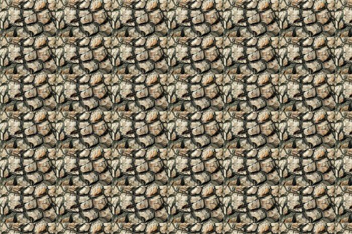 Vinylová Tapeta Sloní noha (Dioscorea elephantipes), jihoafrický závod - Zdraví a medicína