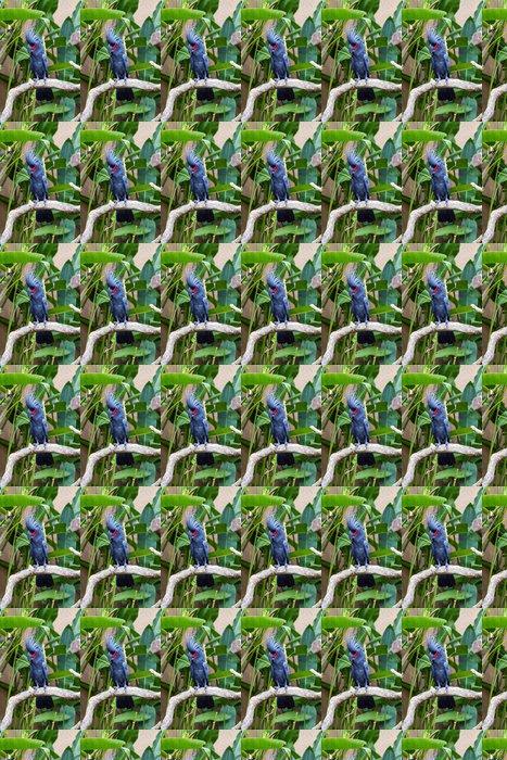 Vinylová Tapeta Palm kakadu Parrot v přírodě okolních - Témata