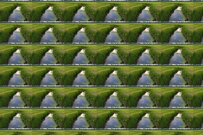 Vinylová Tapeta Příkop v holandské krajiny - Zemědělství