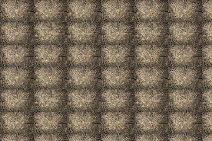 Vinylová Tapeta Textura de Tronco de árbol Cortado - Struktury