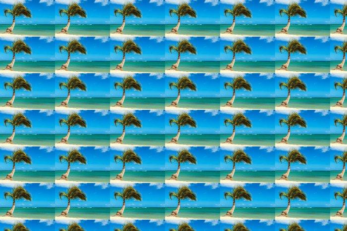 Vinylová Tapeta Palm Tree u břehu - Prázdniny