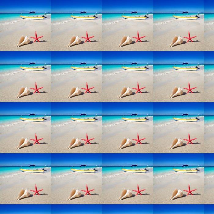 Vinylová Tapeta Pláž hvězdice a mušle na bílém písku - Amerika