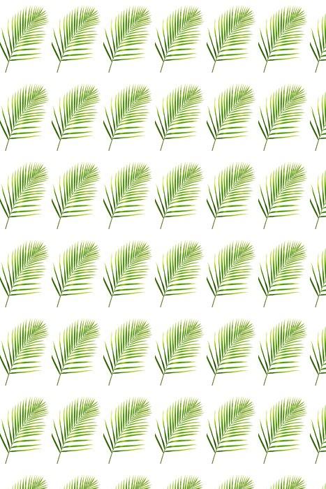Vinylová Tapeta Zelený list palma na bílém - Přírodní krásy