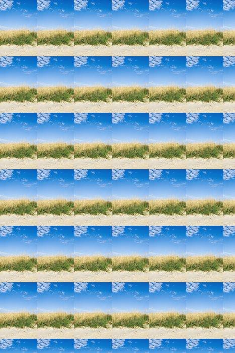 Vinylová Tapeta Mořská tráva na duně - Voda