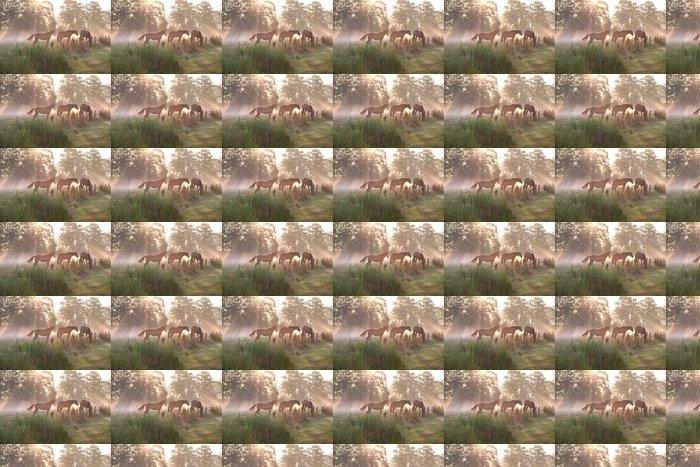 Vinylová Tapeta Koně v mlhavé slunečními paprsky - Roční období